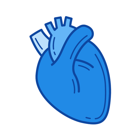 Human heart vector line icon isolated on white background. Human heart line icon for infographic, website or app. Blue icon designed on a grid system.