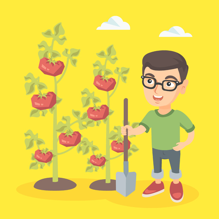Little caucasian farmer boy with shovel standing near the bush of tomato at the farm. Happy farmer boy in glasses cultivating tomatoes in the garden. Vector sketch cartoon illustration. Square layout.
