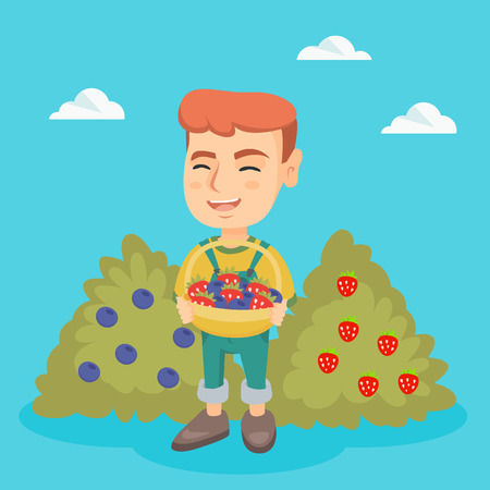 Caucasian boy holding the basket of strawberries and blueberries. Little boy standing on the background of the bushes of strawberries and blueberries. Vector sketch cartoon illustration. Square layout Illustration