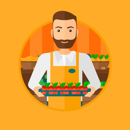 A hipster supermarket worker with the beard holding a box with apples. Supermarket worker carrying box with fruits in supermarket. Vector flat design illustration in the circle isolated on background.