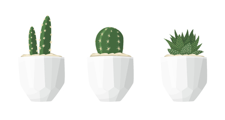 Cactus illustrations in a flat style isolated on a white background. Variety of decorative home plants cactus and succulent in white geometric minimalist ceramic pots. Set of vector flat illustrations.