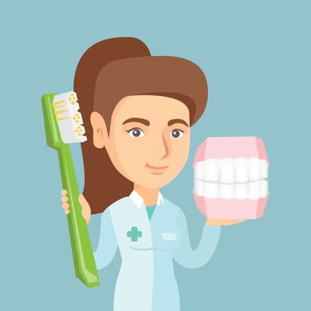 Caucasian dentist showing a dental jaw model and a toothbrush. Young dentist holding a dental jaw model and a toothbrush in hands. Dentistry concept. Vector cartoon illustration. Square layout. Illustration