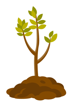 Tree growing in the soil. Vector cartoon illustration isolated on white background.