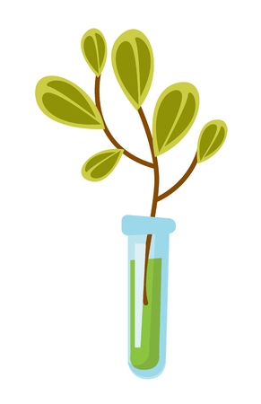 Test tube with small green sprout undergoing laboratory experiment. Biotechnology research. Vector cartoon illustration isolated on white background. Illustration
