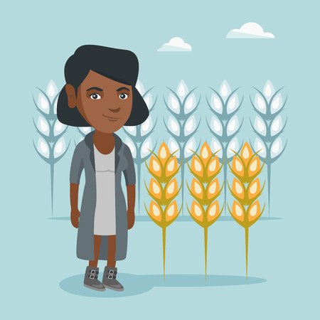Young african-american rancher standing on the background of wheat field. Smiling rancher working in a wheat field. Cheerful rancher checking wheat harvest. Vector cartoon illustration. Square layout. Illustration