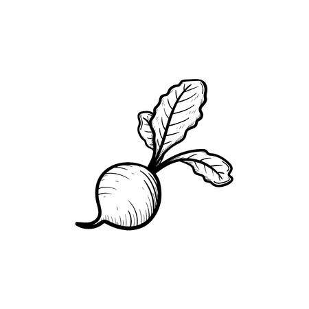 Vector hand drawn beet outline doodle icon. Food sketch illustration for print, web, mobile and infographics isolated on white background.