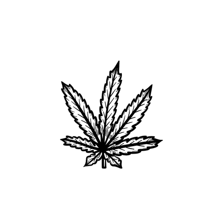 Vector hand drawn marijuana leaf outline doodle icon. Marijuana leaf sketch illustration for print, web, mobile and infographics isolated on white background. Illustration