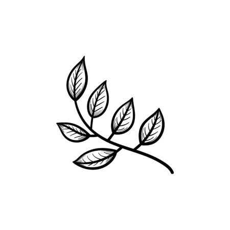 A Vector hand drawn leaves on branch outline doodle icon. Leaves on branch sketch illustration for print, web, mobile and infographics isolated on white background.
