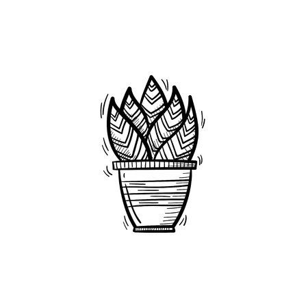 A Vector hand drawn sansevieria trifasciata outline doodle icon. Decorative potted house plant sketch illustration for print, web, mobile and infographics isolated on white background.