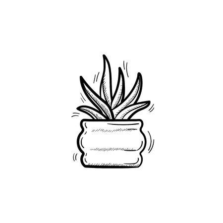 A --Vector hand drawn sansevieria trifasciata outline doodle icon. Decorative potted house plant sketch illustration for print, web, mobile and infographics isolated on white background.