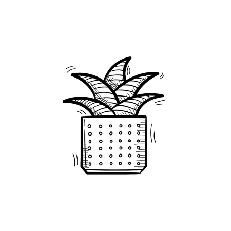 A --Vector hand drawn mother-in-law tongue plant outline doodle icon. Decorative potted house plant sketch illustration for print, web, mobile and infographics isolated on white background.