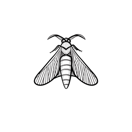 A Vector hand drawn locust outline doodle icon. Locust sketch illustration for print, web, mobile and infographics isolated on white background.