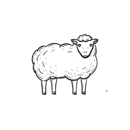 Vector hand drawn sheep outline doodle icon. Sheep sketch illustration for print, web, mobile and info-graphics. Isolated on white background.