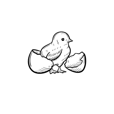 Chick peeking out of egg shell hand drawn vector outline doodle icon. Chick head sketch illustration for print, web, mobile and info-graphics. Isolated on white background. Ilustração