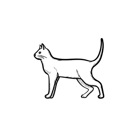 Vector hand drawn Cat outline doodle icon. Cat sketch illustration for print, web, mobile and infographics isolated on white background.