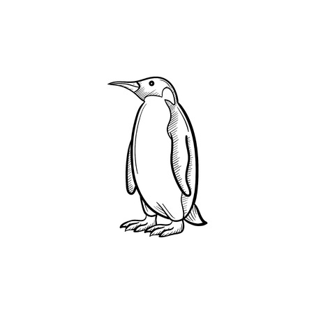 Vector hand drawn Penguin outline doodle icon. Penguin sketch illustration for print, web, mobile and infographics isolated on white background. Illustration