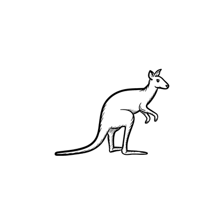 Vector hand drawn Kangaroo outline doodle icon. Kangaroo sketch illustration for print, web, mobile and infographics isolated on white background.