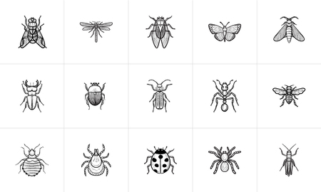 Insects sketch icon set for web, mobile and infographics. Hand drawn Insects vector icon set isolated on white background.