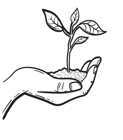 Human hand holding handful of soil with young sprout sketch icon vector illustration Illusztráció