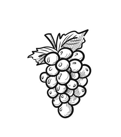 Grappe de raisin avec icône de croquis de feuille pour le web, mobile et infographie. Grappe de vecteur de raisins dessinés à la main icône isolé sur fond blanc. Vecteurs