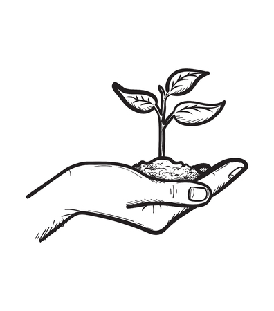 Human hand holding handful of soil with young sprout sketch icon vector illustration Ilustração