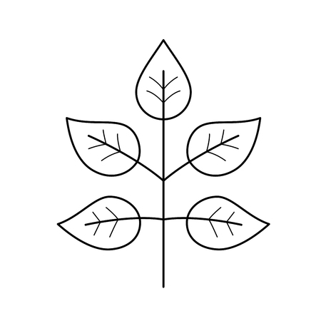 Branch with leaves vector line icon isolated on white background. Young spring branch with leaves line icon for infographic, website or app.