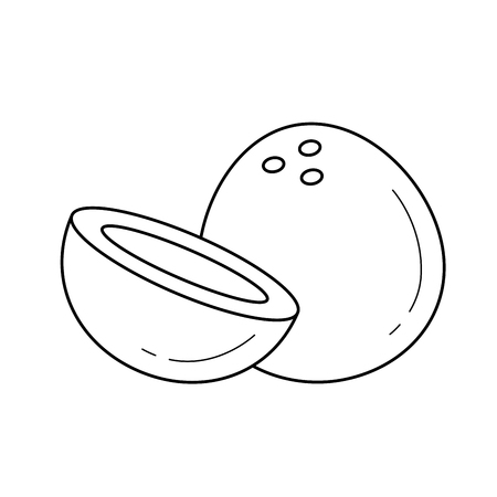 インフォグラフィック、ウェブサイトやアプリのためのココナッツフルーツの全体と半分のラインアイコンのベクトルイラスト。