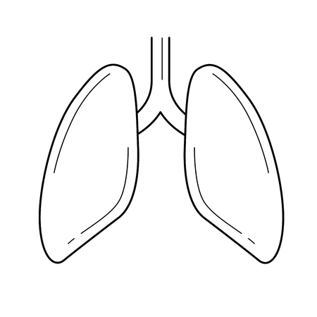 Lungs vector line icon isolated on white background. Lungs line icon for infographic, website or app. Icon designed on a grid system. Illustration