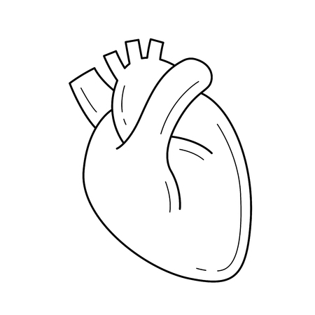 Human heart vector line icon isolated on white background. Medical concept. Human heart line icon for infographic, website or app. Icon designed on a grid system. Ilustrace