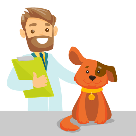 Caucasian white veterinarian doctor examining the dog in the hospital. Veterinarian doctor stroking the dog at vet clinic. Concept of medicine and pet care. Vector cartoon illustration. Square layout.