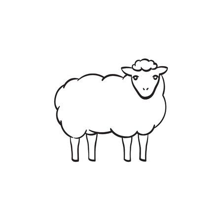 Sheep with wool hand drawn outline doodle icon. Vector sketch illustration of lamb for print, web, mobile and infographics isolated on white background.