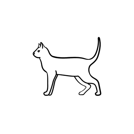 Cat hand drawn outline doodle icon. Domestic animal - cat vector sketch illustration for print, web, mobile and infographics isolated on white background.