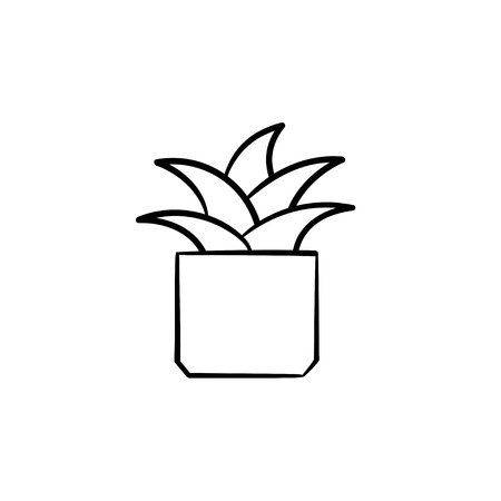 Mother-in-law tongue plant hand drawn vector outline doodle icon. Decorative potted house plant sketch illustration for print, web, mobile and infographics isolated on white background. Illustration