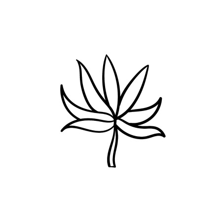 Plant leaf hand drawn vector outline doodle icon. Vector sketch illustration of plant leaf for print, web, mobile and infographics isolated on white background.