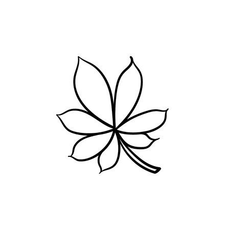 Chestnut leaf hand drawn vector outline doodle icon. Vector sketch illustration of chestnut leaf for print, web, mobile and info-graphics.