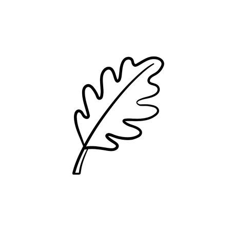 Oak leaf hand drawn vector outline doodle icon. Vector sketch illustration of oak leaf for print, web, mobile and info-graphics.