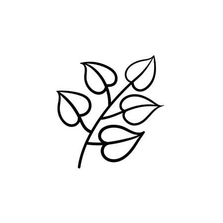 Linden leaves hand drawn vector outline doodle icon. Vector sketch illustration of linden branch with leaves for print, web, mobile and info-graphics.