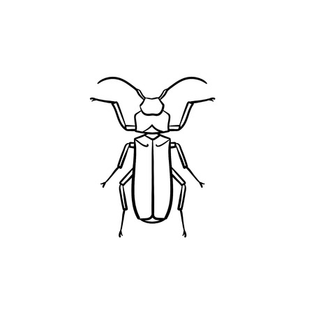 Beetle hand drawn outline doodle icon. Insect beetle vector sketch illustration for print, web, mobile and infographics isolated on white background.  イラスト・ベクター素材