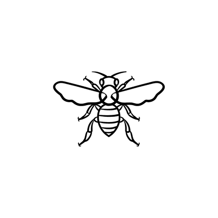 Bee hand drawn outline doodle icon. Insect bee vector sketch illustration for print, web, mobile and infographics isolated on white background.