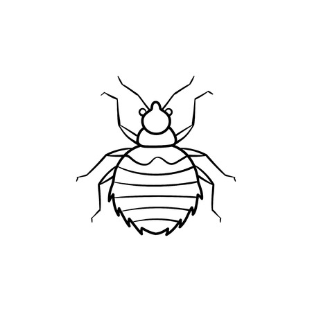 Spider hand drawn outline doodle icon. Insect spider vector sketch illustration for print, web, mobile and infographics isolated on white background. Stock Illustratie