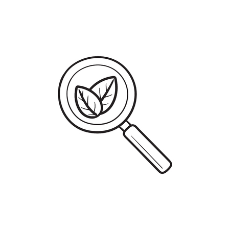 Magnifier with leaves hand drawn outline doodle icon. Organic search, seo, digital marketing concept. Vector sketch illustration for print, web, mobile and infographics on white background.