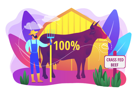 Organic agriculture industry. Eco farming, cattle breeding business. Grass fed beef, grass-finished beef, finest nutrient rich meat concept. Bright vibrant violet vector isolated illustration  イラスト・ベクター素材