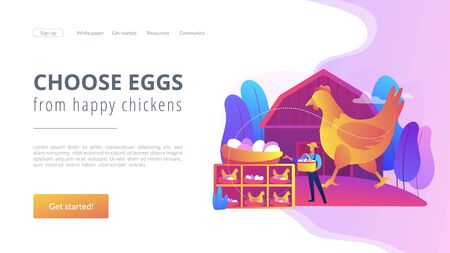 Free run chicken and eggs concept landing page. Stock Illustratie