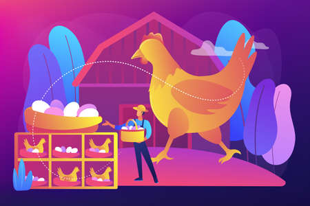 Free run chicken and eggs concept vector illustration.