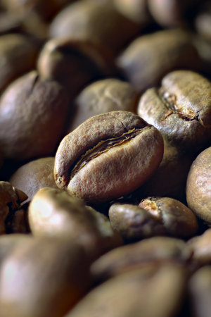 Macro closeup of light roasted coffee beans of Ethiopian origin suitable for Turkish coffee shot at 45 degrees angle, shallow depth of field