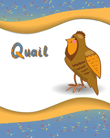Alphabet letter Q and quail with a colored