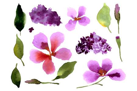 Illustratie met bloemen en bladeren voor uw ontwerp