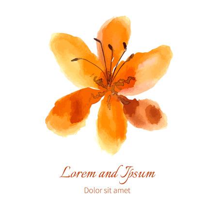 Lily vector illustratie hand getekend aquarel