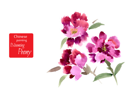 bunch of red roses: Peony, painted in gouache. Stylized Chinese painting. Vector illustration