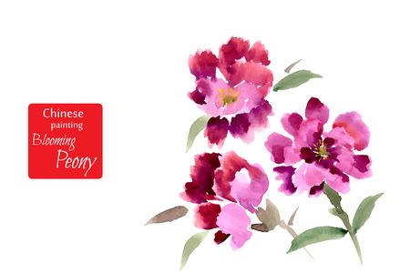 flores chinas: Peony, pintado en gouache. Pintura china estilizada. Ilustración vectorial